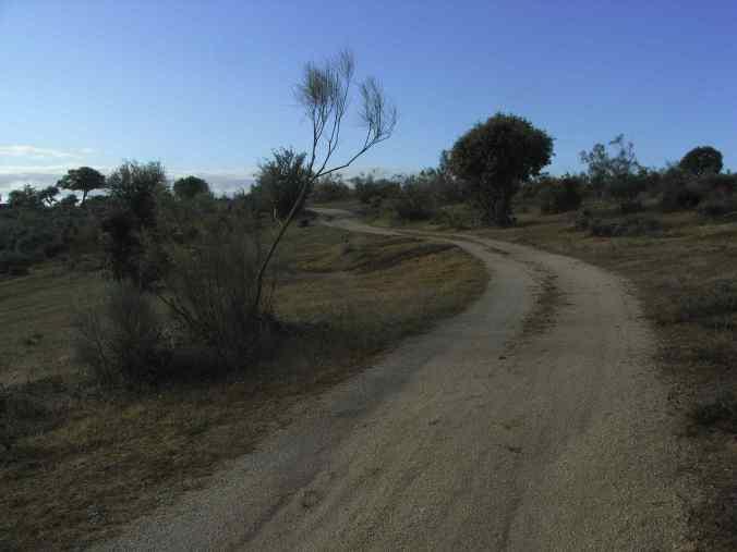 Vista del camino