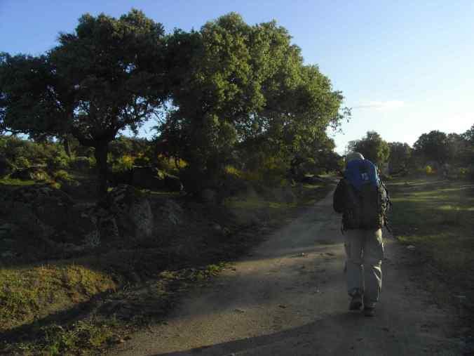 El camino por la dehesa