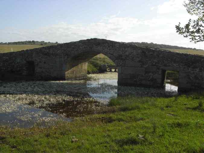 Otro puente en el camino