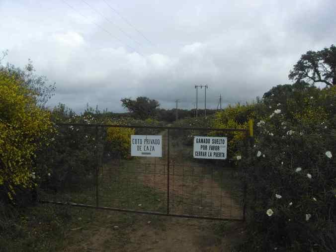 Un portón entre flores