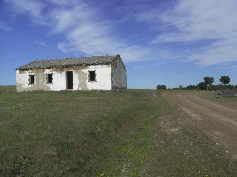 Camino en la finca con casa en ruinas