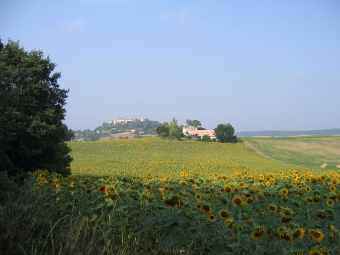 111 Camino Durfort Lacapelette