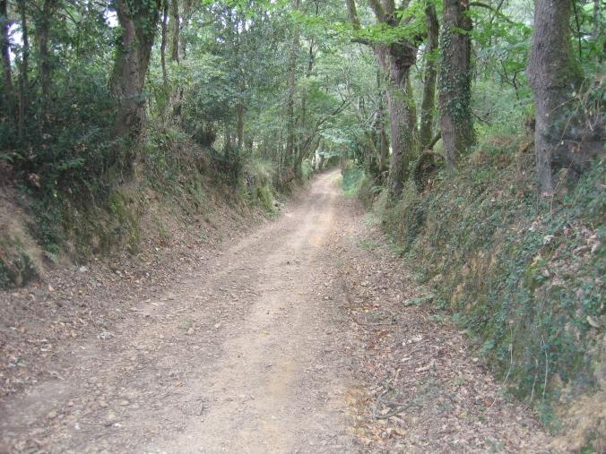 182 Camino Arthez-de-Bearn