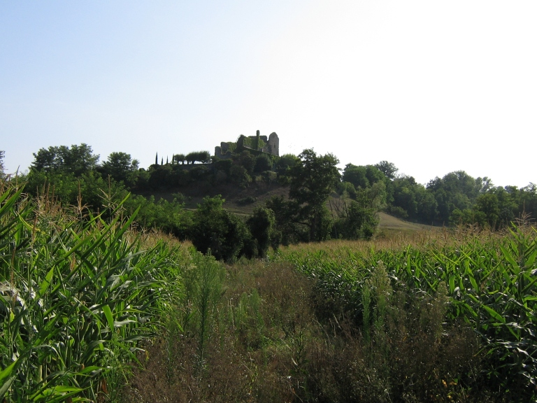 546 Chateau Rné