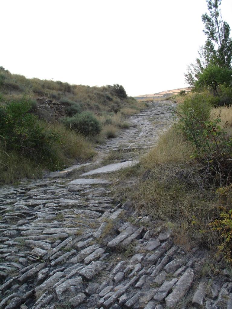 camino aragonés0108