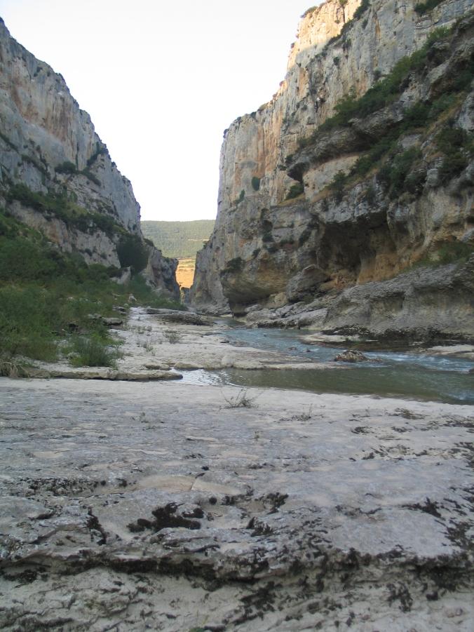camino aragonés0118