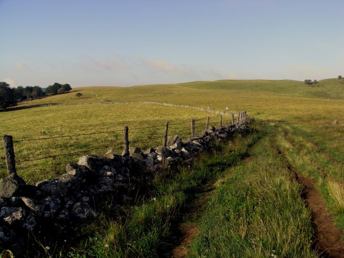 Camino a Aubrac