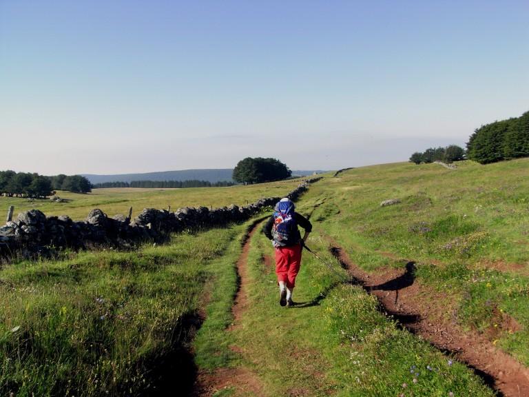 Camino de Aubrac