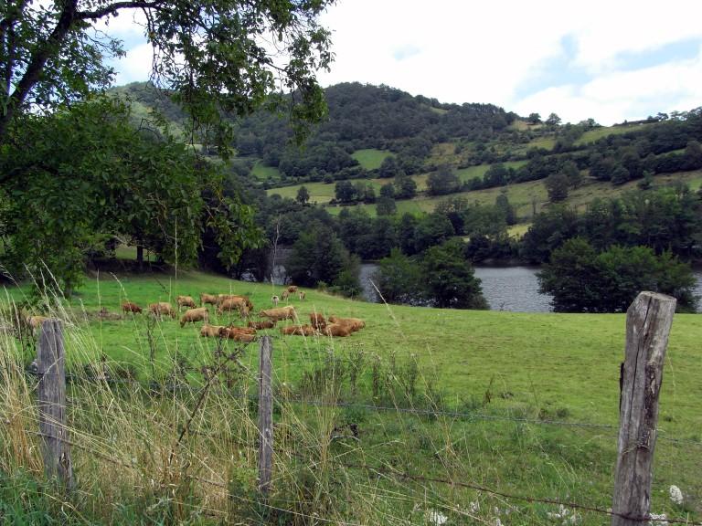 Por el valle del Lot hacia Golinhac