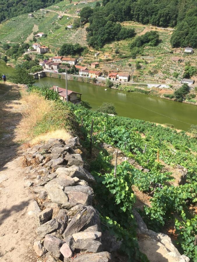 Vista del valle del Miño en Belesar