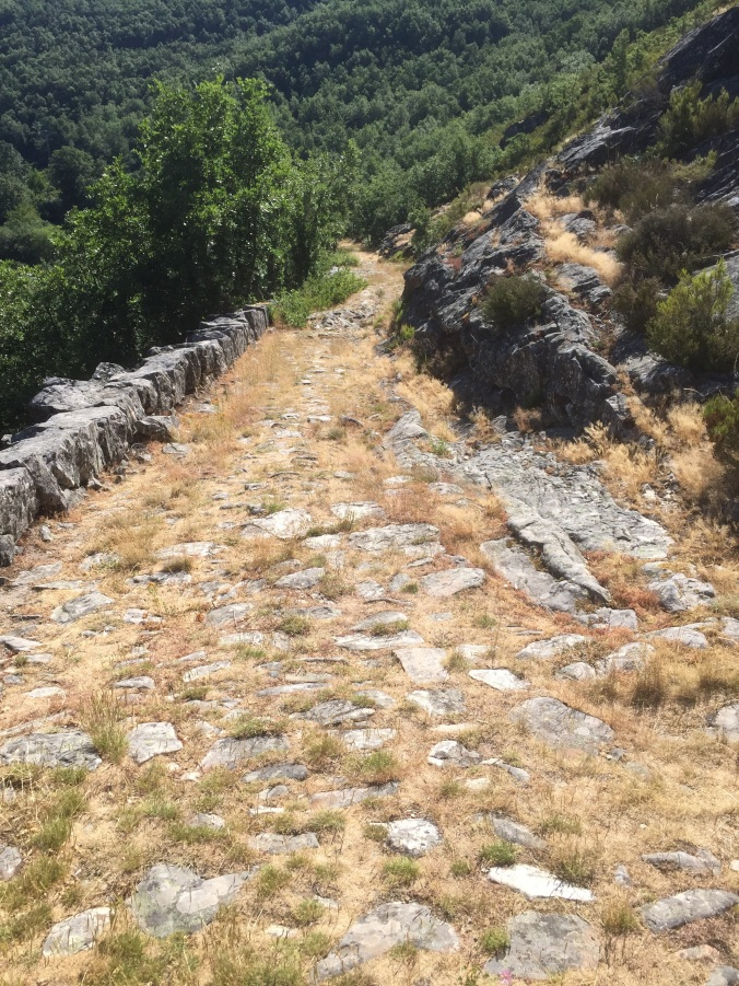 Calzada romana del Esla