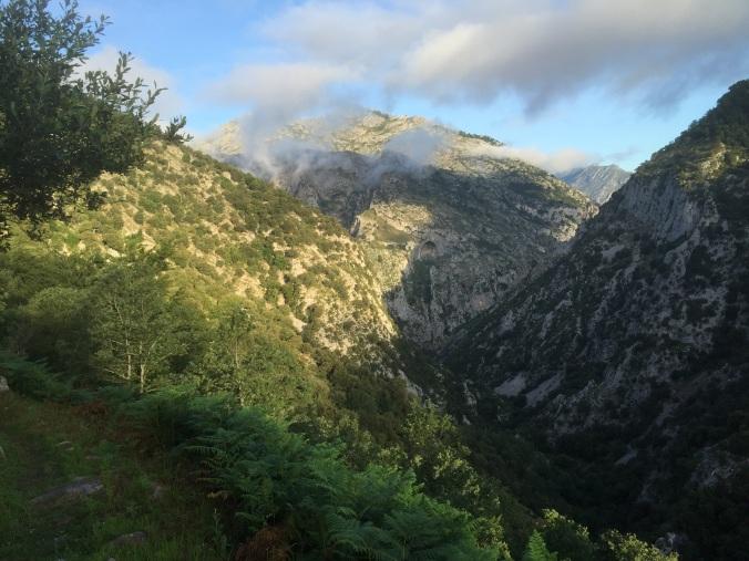 Mirando los Picos de Europa