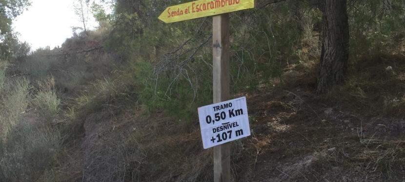 Trail de la Peñarrubia2015