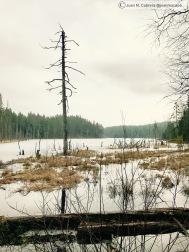 Parque nacional de Isojarvi. Kuorejärvi