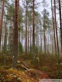 Parque nacional de Setseminen