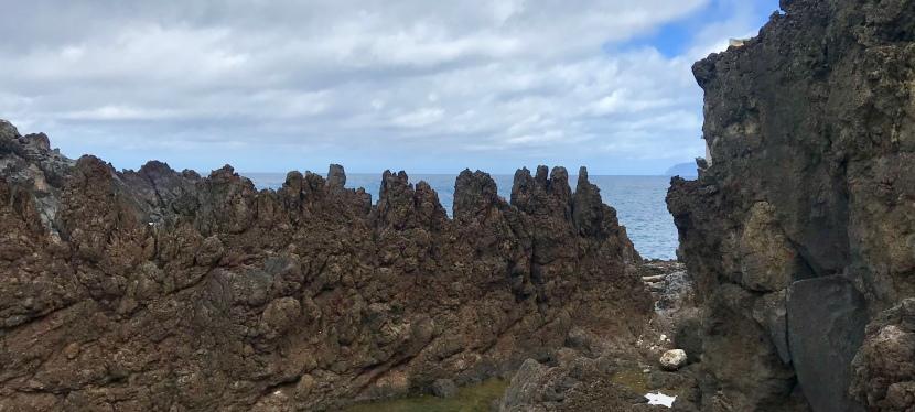 Madeira 2019: Levada das 25fontes