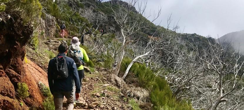 Madeira 2019: Picos Areeiro yRuivo