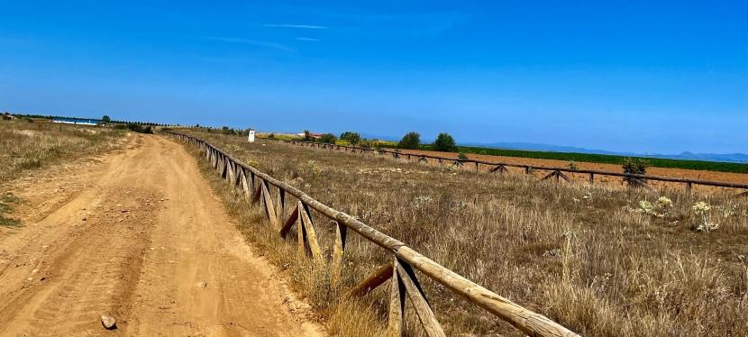 12ª Etapa: Sahagún – Mansilla de las Mulas (por VíaTrajana)